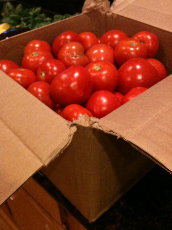 Big ole box o maters