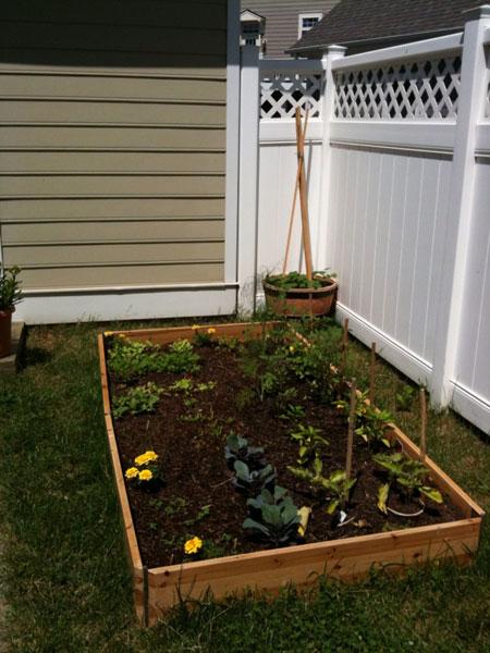 Garden_one-month-in