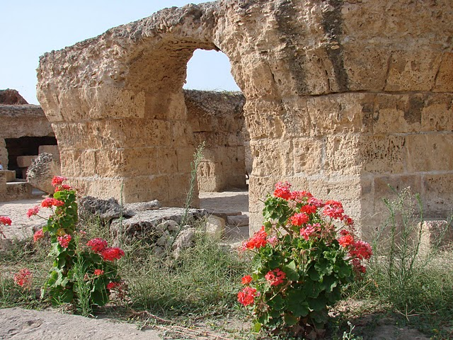 Carthage1